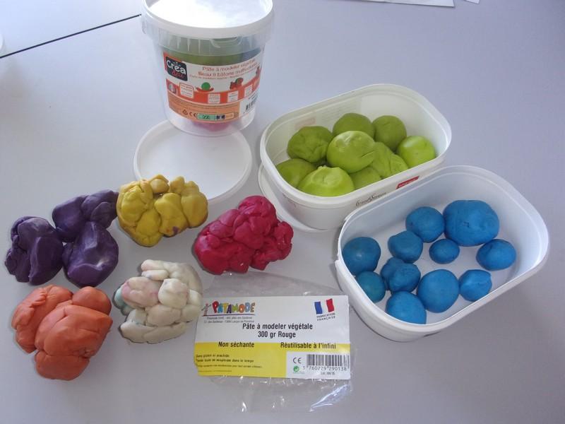 Des Organes Genitaux En Pate A Modeler Sciences De La Vie Et De La Terre Pedagogie Academie De Poitiers
