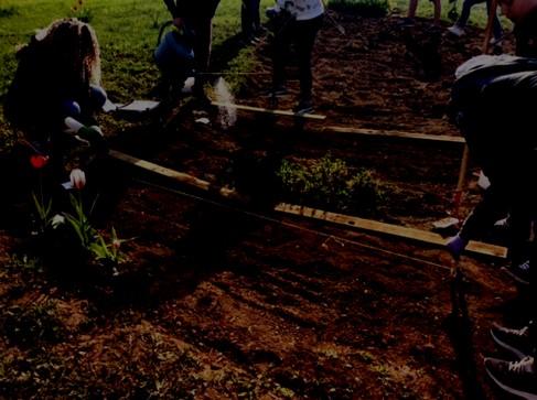 Label e3d le coll ge pierre de ronsard de poitiers - College du jardin des plantes poitiers ...
